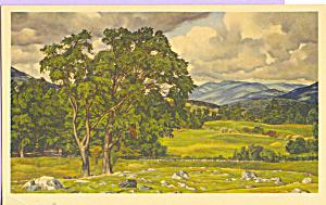 Vermont Pastorial Luigi Lucioni Postcard p21798 (Image1)