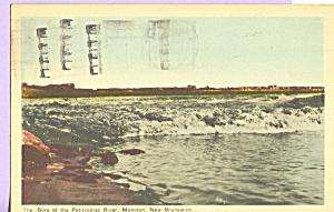 Petitcodiac River, Moncton, New Brunswick,Canada (Image1)