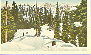 Grouse Mountain,Vancouver,British Columbia,Canada (Image1)