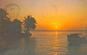 Florida Sunset Postcard p22035 (Image1)