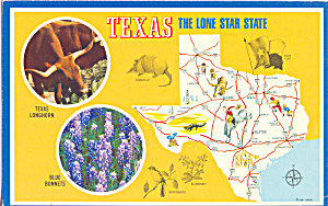 Texas State Map The Lone Star State p22369 (Image1)