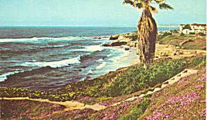 Shore Scene La Jolla California p22377 (Image1)