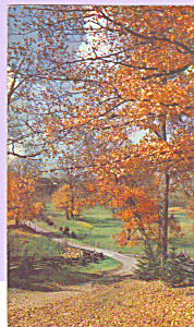 Autumn Scene Postcard P22474