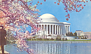 Jefferson Memorial With Cherry Blossoms Washington Dc P22859