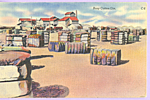 Busy Cotton Gin Postcard p23031 (Image1)