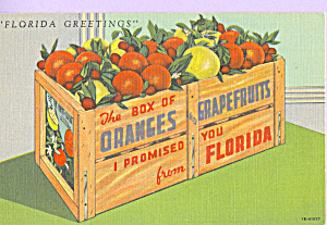Box of Oranges and Grapefruits Postcard p23047 (Image1)
