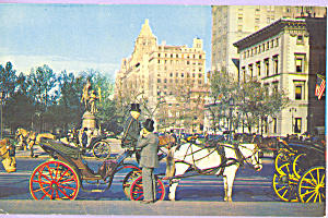 Carriages on 59th Street New York City p23289 (Image1)