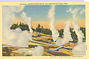 Norris Geyser Basin, Yellowstone National Park (Image1)