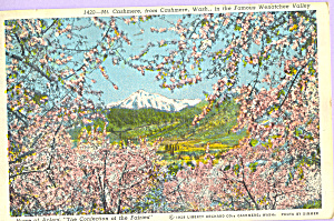 Mt Cashmere from Cashmere Washington p23375 (Image1)