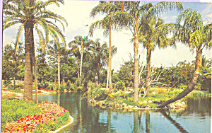 Busch Gardens Africa, Tampa Florida (Image1)