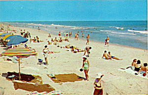 Clear Blue Water Beach Scene (Image1)