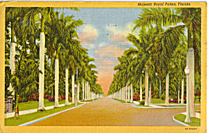 Majestic Royal Palms, Florida
