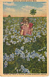 Fields of Bluebonnets Marlin Texas p23800 (Image1)