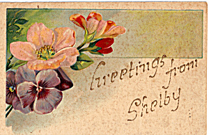 Greetings From Shelby Postcard p23888 (Image1)