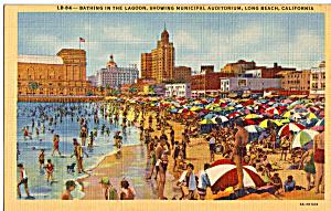 Bathing in Lagoon Long Beach California p23951 (Image1)
