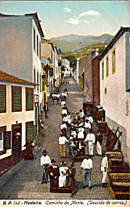 Caminho do Monte Madeira Portugal p24696 (Image1)