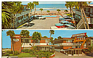 Catalina Beach Motel Daytona Beach Vintage Cars p24775 (Image1)