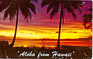 Tropical Sunset Hawaii p24869 (Image1)