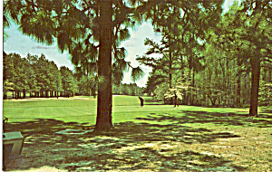 No 6 Green at Mid Pines Club Southern Pines NC p24948 (Image1)