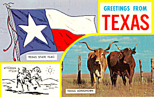 Texas State Flag and  Texas Longhorns p25059 (Image1)