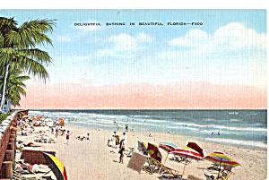 Delightful Bathing in Beautiful Florida p25135 (Image1)