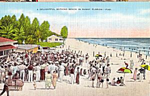 Delightful Bathing Beach in Sunny Florida p25136 (Image1)