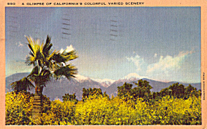 A Glimpse of California s Varied Scenery p25185 (Image1)