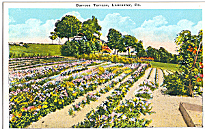 Barrose Terrace Lancaster Pennsylvania p25330 (Image1)
