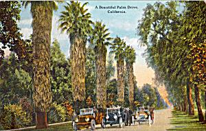 A Beautiful Palm Drive California p25485 Vintage Cars (Image1)