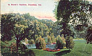 In Busch s Sunken Gardens Pasadena CA p25495 (Image1)