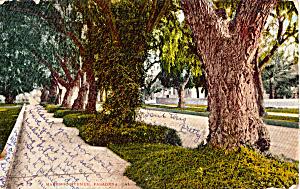 Marengo Avenue Pasadena California p25548 (Image1)
