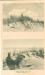 Sand Dunes And Sea Stone Harbor New Jersey P25646