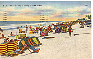 Surf and Sand Along a Florida Beach p25701 (Image1)