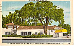Johnston s Coffee Shop  Daytona Beach Florida p25721 (Image1)