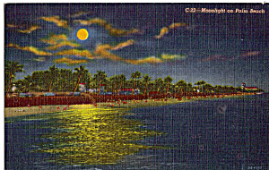 Moonlight On Palm Beach Florida P25741