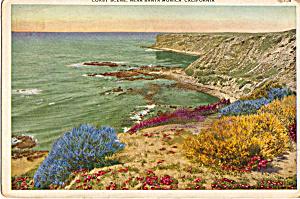 Coast Scene near Santa Monica  California p25905 (Image1)