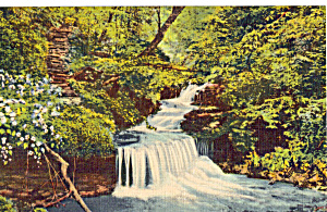 A Pennsylvania Waterfall Postcard p26030 (Image1)