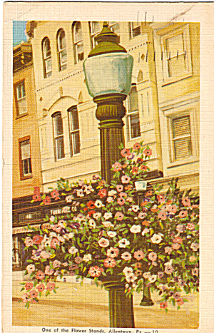 One of the Flower Stands,Allentown, Pennsylvania (Image1)