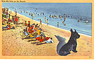 With my Pals on the Beach ostcard p26359 (Image1)