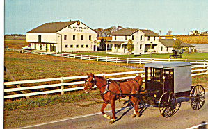 Amish Buggy in Front of Plain and Fancy Farm p26438 (Image1)