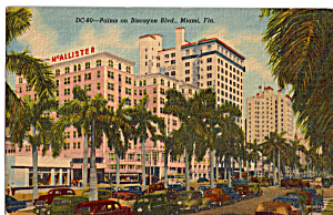 Palms On Biscayne Blvd Miami Florida P26629