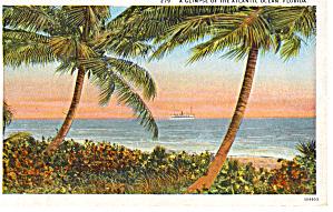 A Glimpse of the Atlantic Ocean  Florida p26639 (Image1)