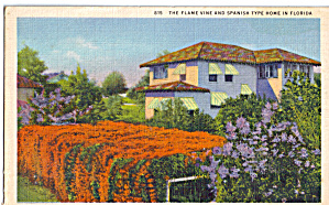The Flame Vine And Spanish Type Home In Florida P26649