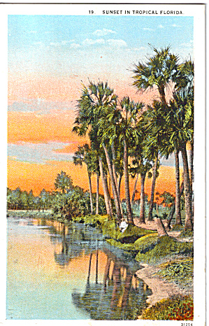 Sunset In Tropical Florida Postcard P26662