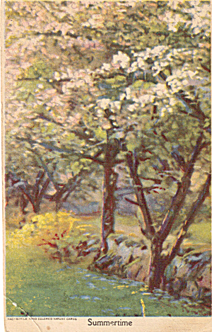 Summertime Hand Colored Postcard p26708	 (Image1)