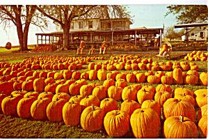 Leroy Pfautz Farm Market Reamstown Pennsylvania p26908 (Image1)