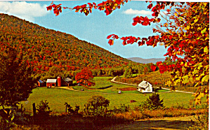 Flaming Foliage Of Fall Postcard P26953