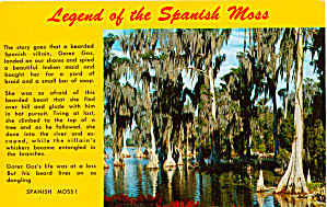 Legend of the Spanish Moss (Image1)