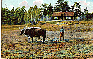 Farming in Sweden (Image1)