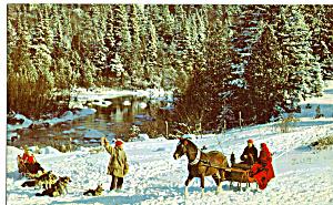 Sleigh and Dog Sled Jingle Bells p27060 (Image1)